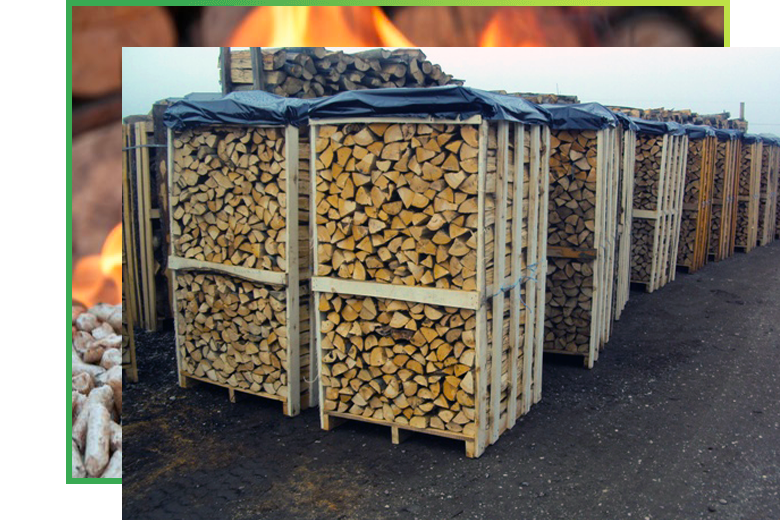 legno2